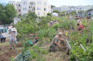ACG Community Gardeners at Work‏