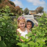 Smiles in Raspberry Patch